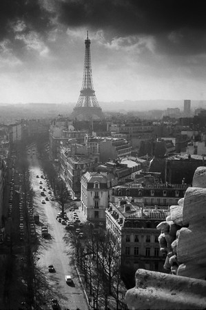 Paris in Autumn - Steve Brown