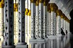 Mosque - Alister Munro