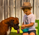 Boy and His Dog - Michele Augustyn