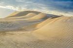 Dunes in the Sun - Kim McAvoy