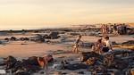 Cable Beach Sunset - Ron Dullard