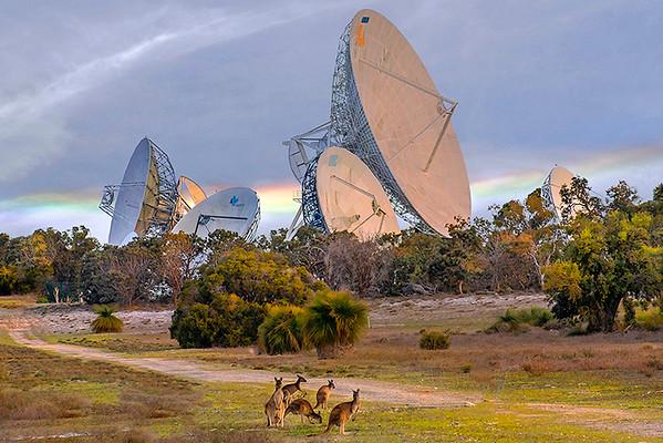 Satellite Dishes - Sybille Bonow