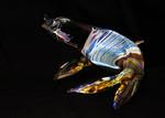 Venetian Glass - Roger Jakeway