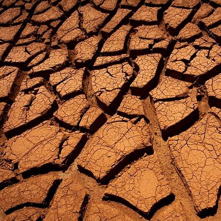 Dry Earth - Marise Fitzmaurice