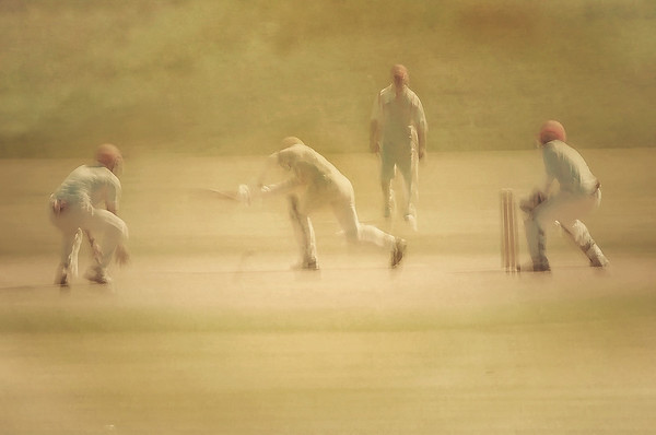 Dreaming of Cricket - Richard Goodwin
