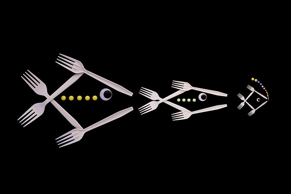 The Food Chain - Robert Woodbury