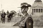 ANZAC Day - Susi Nodding