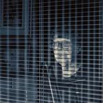 Lock Down - Ron Dullard