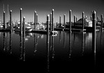 Boat Pen - Steve Brown