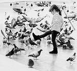 Fly Away - Ron Dullard