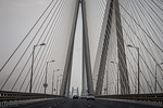Bandra Worli Sea Link Bridge - Susi Nodding