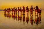 Sunset in Broome - Trish Gibbs