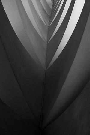 Dark to Light - Marise Fitzmaurice