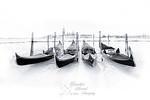 Venice - Sybille Bonow