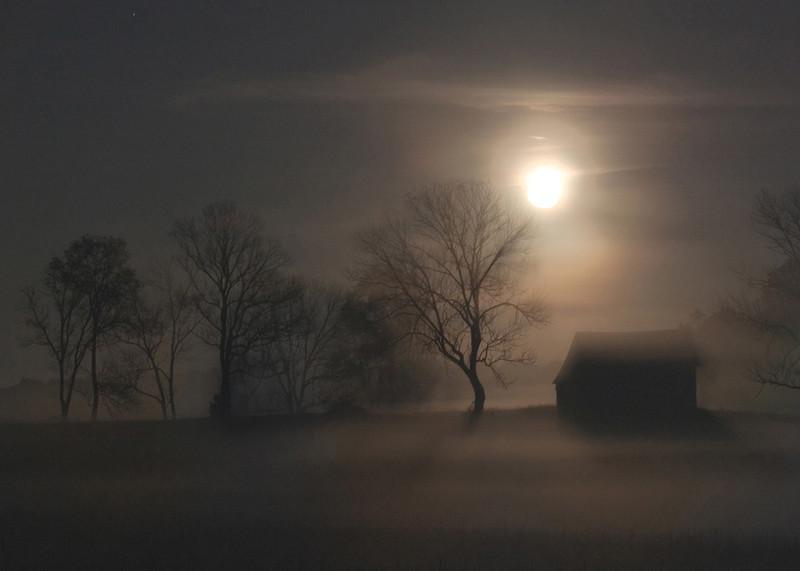 Fog House