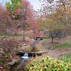 Indiana University in Fall