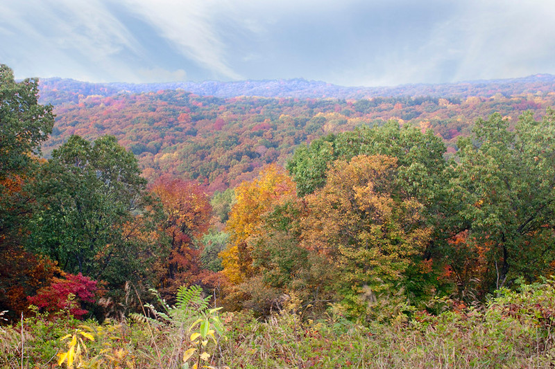 Overlook in Fall 1