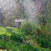 Gardens at Spring Mill