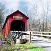 Covered Bridge with Redbuds
