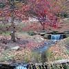 IU Waterfall in Fall