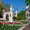 Sample Gates with Tulips
