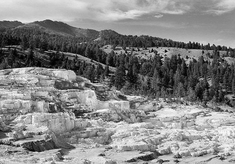Yellowstone Terraces