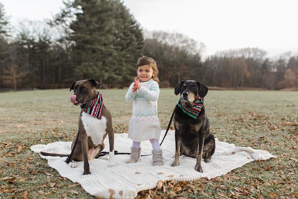 Abbie_Dogs-15