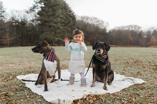 Abbie_Dogs-14