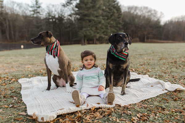 Abbie_Dogs-6