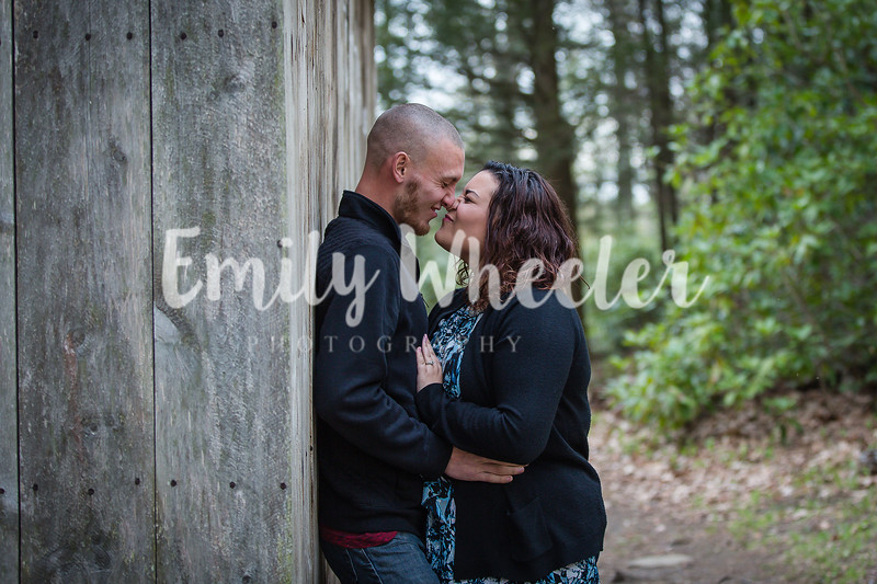 LizTroyEngagement-1
