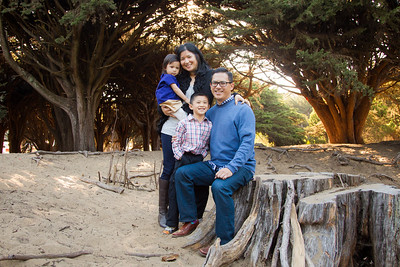The Lam Family 2014