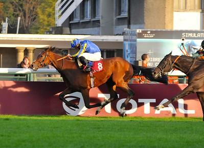 HIGH JINX wiining the 2014 Prix du Cadran