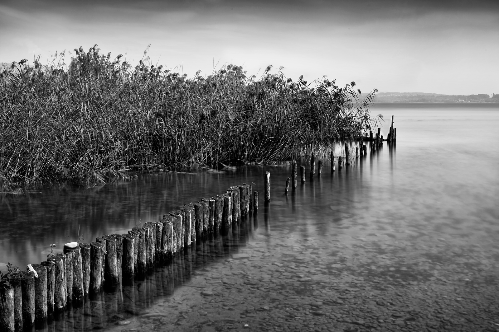 Lac Biene