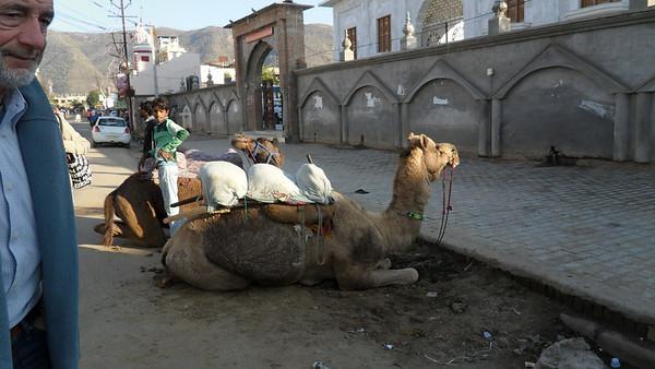 Mandawa to Pushkar