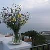 Marilyn's wild flowers on the balcony......
