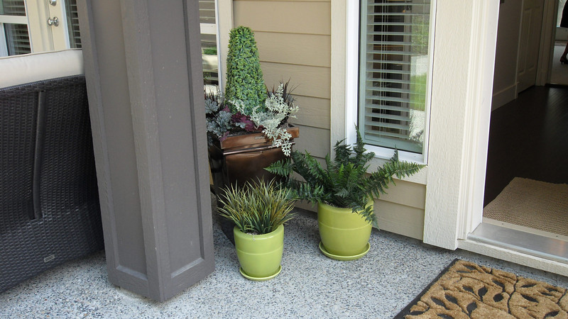 More plants outside main entrance door.