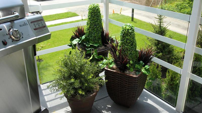 Genuine imitation plants on deck.