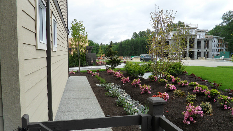 Landscaping towards the complex entrance drive.