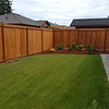 The newly stained cedar fence looks great - just post caps to add.