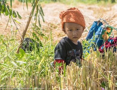 Children at a Rice Field, Kyaing Tong, Shan State, Myanmar