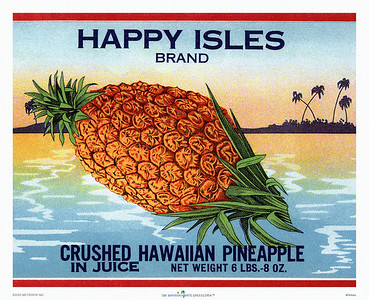 "044: ""Happy Isles"" - Pineapple Can Label, ca. 1940, featuring a large pineapple and a tropical beach. This Hawaiian pineapple picture shows only a portion of the label. The previous image shows the complete Happy Isles Crushed Hawaiian Pineapple In Juice label."