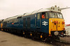 Laira blue liveried 50008 Thunderer on display at Coalville open day on 26 May 1991.