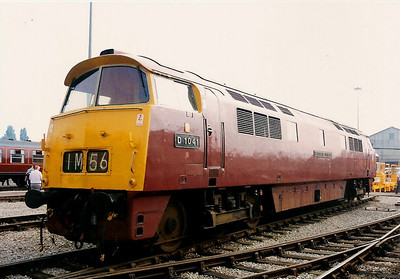 D1041 WESTERN  PRINCE at Crewe Works open day on 17 August 1996.