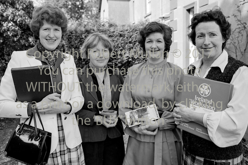 At a Wicklow Tourism meeting.  Circa 1980s