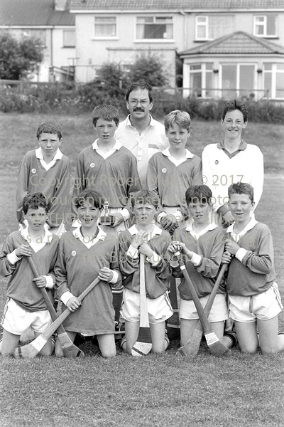 Junior Hurlers from Wicklow - 1980s/90s