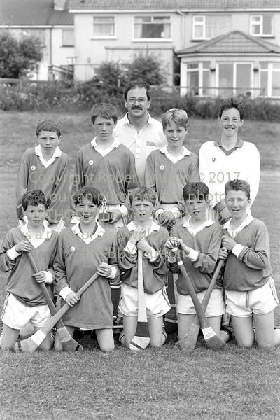 Junior Hurlers from Wicklow - 1980s/90s