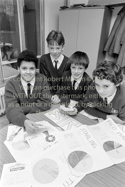 Young scientists, Wicklow 1986-7