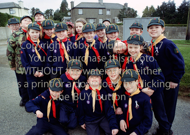 Scouts from Wicklow - circa 1990s