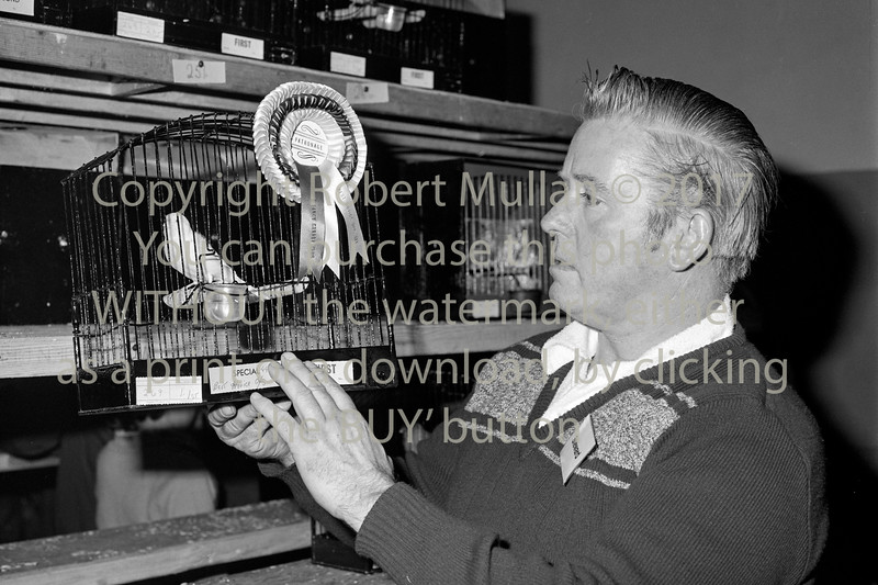 At Wicklow Cage Bird Show.  Date unknown
