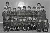 A group of scouts from Wicklow - 1980s/90s